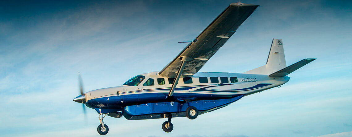 Cessna Grand Caravan EX description